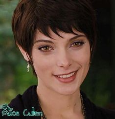 Imgs For > Alice Cullen Breaking Dawn Part 2 Haircut