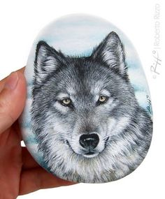 A wild wolf painted on a flat sea rock | Rock painting #art by @robertorizzoart…