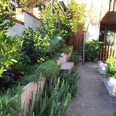 58 Trendy low maintenance landscape ideas front yard stones pea gravel - All For Garden Low Maintenance Landscaping, Low Maintenance Garden, Modern Landscaping, Front Yard Landscaping, Landscaping Design, Cool Ideas, Sleepers In Garden, Yard Stones, Landscape Design Small