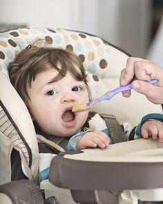 Aos 6 meses, o bebê já deve seguir uma rotina alimentar e experimentar outros sabores, além do leite materno. Confira uma sugestão de cardápio e receitas de papinhas! #comidinha #bebê