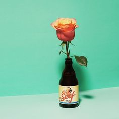 'Shopping' in andC Magazine Photography by Frank Brandwijk for ChantalJanzen.official I 'a Rose in a Bottle' 'Rosé Beer' 'on Mint' I 'Andsee' 'Andcgram'