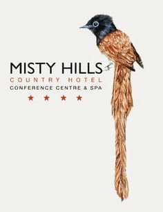 Recreation Africa: Misty Hills Hotel Conference Centre & Spa New. Country Hotel, Conference, Centre, Africa, Spa, Afro