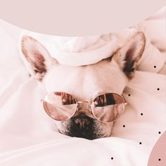 """Want to increase Instagram engagement? Post more photos of dogs. (Kidding, sort of). 😉 The secret is actually in a strategic & great caption! 📝⠀ ⠀ A good caption increases """"time spent on post,"""" which is one of the key factors that the algorithm uses to decide how many people will see your post.   Not only that, captions are also a huge opportunity to build a stronger relationship with your audience. In its simplest form, a good Instagram caption is one that provides context, adds… Good Instagram Captions, Cool Captions, How Many People, Strong Relationship, More Photos, Factors, Persona, Opportunity, Muse"""