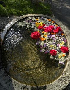 fountain filled with flowers by queencashmere, via Flickr