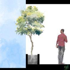 Fachada viva: sua casa também pode ter uma | Greentopia