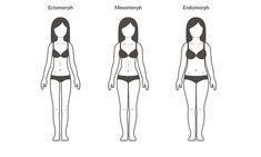 Finde heraus, welcher Körpertyp du bist!