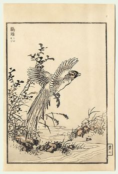 K Nakajima Woodblock Prints ... ) Japanese Woodblock Print Bairei's Album of One Hundred Birds, 1881