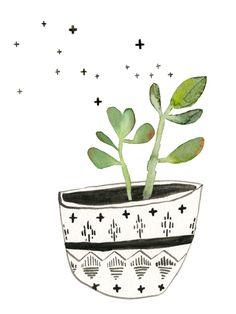 Succulent No. 1 / Lindsay Gardner
