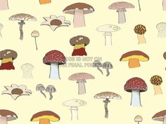PAINTING ABSTRACT FUNGUS MUSHROOM TOADSTOOL DESIGN VECTOR POSTER PRINT BMP10949
