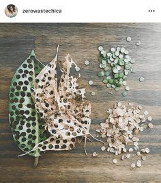 Confetti Made From Fallen Leaves! Loved This Zero-Waste Decoration Idea Confetti Made From Fallen Leaves! Loved This Zero-Waste Decoration Idea Dream Wedding, Wedding Day, Autumn Wedding, Eco Wedding Ideas, Wedding Beauty, Crafty Wedding Ideas, Diy Your Wedding, Wedding Send Off, Surprise Wedding