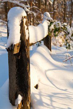 ✼ ✼ ✼ ✼  Snow