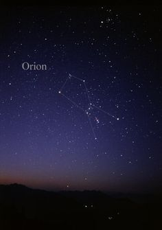 Orion Nebula Orion - Finding constellations in the night sky is an activity that can be enjoyed by young and old alike. Here we feature 15 of the most famous and easy-to-find constellations. Cosmos, Orion Nebula, Constellation Orion, Constellation Tattoos, Orion's Belt, Beach At Night, Star Constellations, Space And Astronomy, Astrophysics