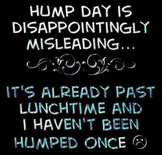 Hump Day quotes quote funny quotes days of the week humor wednesday hump day wednesday quotes Hump Day Meme, Wednesday Hump Day, Wednesday Humor, Cute Quotes, Great Quotes, Quotes To Live By, Funny Quotes, Inspirational Quotes, Naughty Quotes