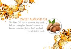 Sweet Almond Oil is a key Essential Oil in DECLÉOR's Micellar Oil, rich in essential fatty acids, to help strengthen the skin's cutaneous barrier for a complexion that's soothed and silk to the touch. Essential Fatty Acids, Essential Oils, Sweet Almond Oil, Therapy, Key, Touch, Silk, Board, Beauty