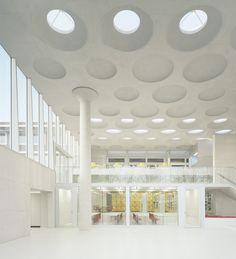 Forum at the Eckenberg Academy / Ecker Architekten Skylights