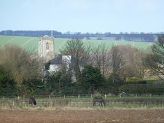 An East Riding Wolds scene between Driffield and Kilham, Kilham, England