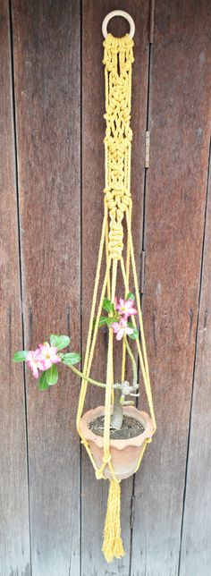 Mustard macrame plant hager by RanranDesign on Etsy