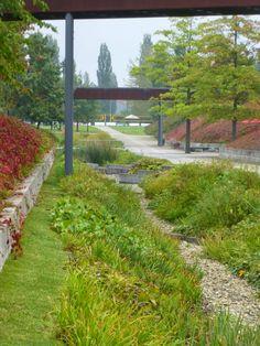 Wadi in Volkspark te Potsdam Rain Garden, Water Garden, Landscaping With Rocks, Garden Landscaping, Landscape Architecture, Landscape Design, Landscape Engineer, Wetland Park, Urban Nature