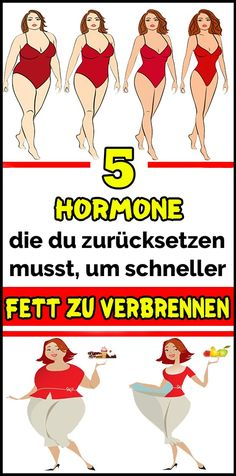 5 hormones you need to reset to burn fat faster Fitness Workouts, Easy Workouts, Yoga Fitness, Fitness Motivation, Health Site, Workout Routines For Beginners, Abs Women, Health Advice, Fitness Nutrition