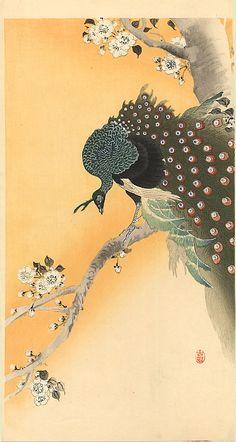 """peacocks"" - WikiPaintings.org -Ohara Koson"