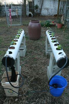 Hydroponic Gardening Ideas Rix Dobbs' NFT hydro set-up Hydroponic Farming, Hydroponic Growing, Hydroponics System, Growing Plants, Growing Weed, Aquaponics Diy, Organic Gardening, Gardening Tips, Container Gardening