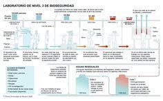 ¿Qué es un laboratorio Clínico de bioseguridad nivel 3? #antrax #gripeaviar #tuberculosis
