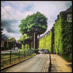 Today @ #Margarethenhöhe #Essen #NRW #Germany #Deutschland #green | Flickr - Fotosharing!