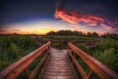 Kind of surreal so I pushed it that way with my post processing. Taken at Bay Area Park a little over an hour ag. Stunning Photography, Fine Art Photography, Fork In The Road, Place To Shoot, Cool Deck, Nature Center, Beautiful Sunset, Pathways