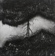 Reflections 2, Hester Cox, Collagraph