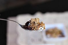 Paleo Almond Honey Granola (uses almond pulp leftover from homemade almond milk) at @CivilizedCaveman