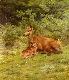 art-and-things-of-beauty:  Rosa Bonheur (French, 1822-1899). - A Deer with her little calf.