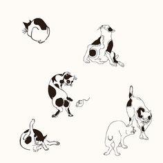 Design som är tillgänglig som tatuering.  Oskar@horiyama.se.  @vackra.ting #irezumi #wabori #japanese #design  #traditional #uå #umeå #sweden #courage #style #tatuering #tatueringar #umeyo #cats #catsofinstagram #cattattoo #smalltattoo #funtattoo