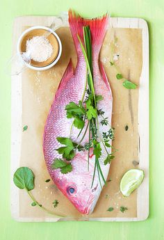 Red Snapper from La Tartine Gourmand. Fish Recipes, Seafood Recipes, Great Recipes, Seafood Salad, Fish And Seafood, Fish Dishes, Seafood Dishes, Melaleuca, Food Photography Styling