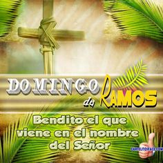 Spiritual Prayers, Morning Thoughts, Jesus Bible, Palm Sunday, Jesus Is Lord, God First, Religious Quotes, Bible Quotes, Christianity