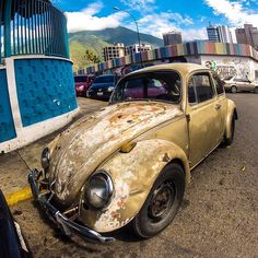 A bit rusty #vw #volkswagen #beetle #vwbeetle #escarabajo #fusca #fuscagram #rusty #dirtmerchantautos #jj_transportation #soloparking #chivera #morninautos (at Chacao)