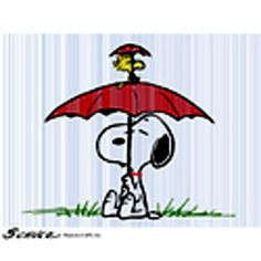 Snoopy and Woodstoock in the rain