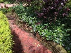 Follow the red brick road . . .