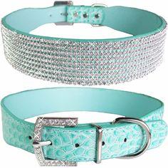 "XXL 1 1/2"" Wide Bling Labrador Retriever Teal Crocodile Dog Adjustable Collar #Unbranded"