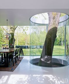 A fabulous way to handle a tree you prefer not to move. integrated building, deck around a tree
