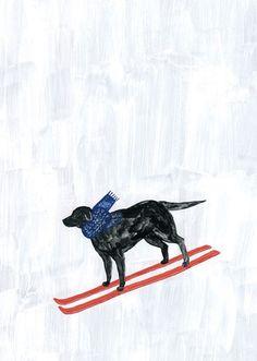 a ski dog!!