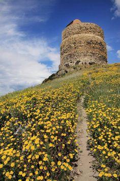 San Giovanni di Sinis e la torre di San Giovanni