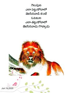 Birthday Greetings Images, Whatsapp Status Quotes, Devotional Quotes, Durga Goddess, Telugu, Philosophy, Lion, Places To Visit, Movie Posters