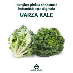 Natur House, Lamp Ideas, Wood Lamps, Metabolism, Kale, Broccoli, Health Fitness, Vegetables, Food