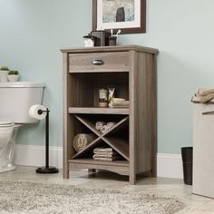 Sauder Harbor View MultiPurpose Stand Oak -- Check this awesome product by going to the link at the image.