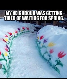 MY NEIGHBOUR WAS GETTING TIRED OF WAITING FOR SPRING #LIFE #HAPPY #FLOWERS #WINTER