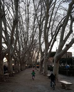 Turisti, per caso, a casa... #rome #roma #castelsantangelo #tree #boulevard #winter #holidays #vacation #vacationtime #luxuryhomes #luxuryapartment #luxuryflats #luxuryrentals #apartmentsforrent #romeapartments #winterholiday #topdestinations #casavacanze - posted by Romeboutiqueapartments https://www.instagram.com/rome_boutique_apartments - See more Luxury Real Estate photos from Local Realtors at https://LocalRealtors.com/stream