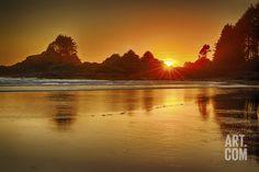 Cox Bay Sunset, Tofino, British Columbia, Canada Photographic Print by Arnab Banerjee at Art.com