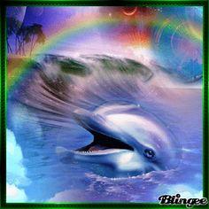 Rainbow Dolphin | Rainbow Dolphin Picture #123912172 | Blingee.com