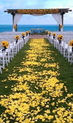 Dream Aisle. Beach as the background. Yellow rose petals with sunflower aisle decorations.
