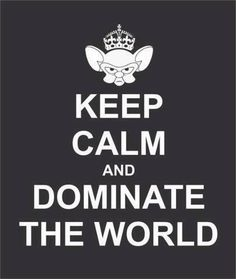 We shall keep calm and dominate the world. @Jennifer Pidcock